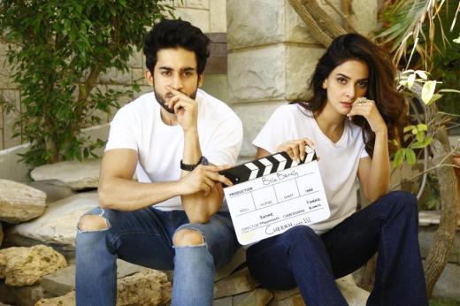 Bilal Abbas Khan and Saba Qamar (2)
